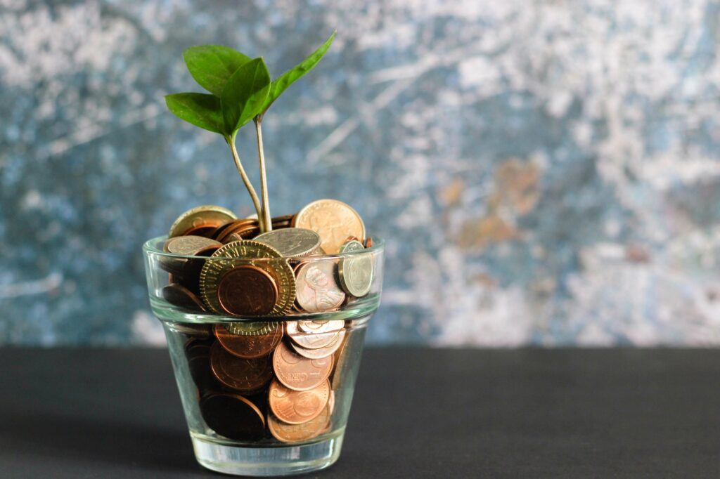 Plant growing from money to buy a home inspection